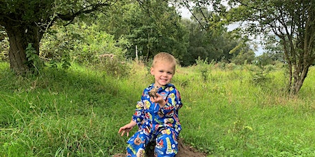 Wild Tots at Knettishall Heath - Tuesday 24th August (P6P 2814) tickets