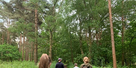 Young Wardens at Knettishall Heath - Sunday 1st August (P6P 2815) tickets