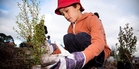 Planting Day at Tawharanui Open Sanctuary tickets
