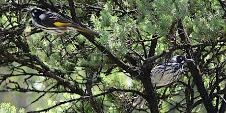 Habitat Gardens in Hobsons Bay tickets
