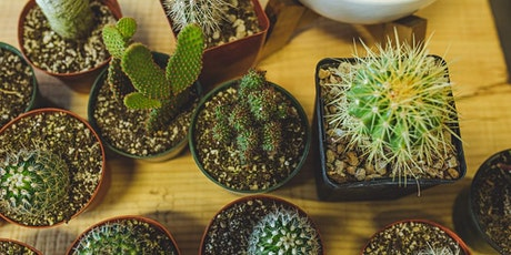 Succulents and Cacti 101 tickets