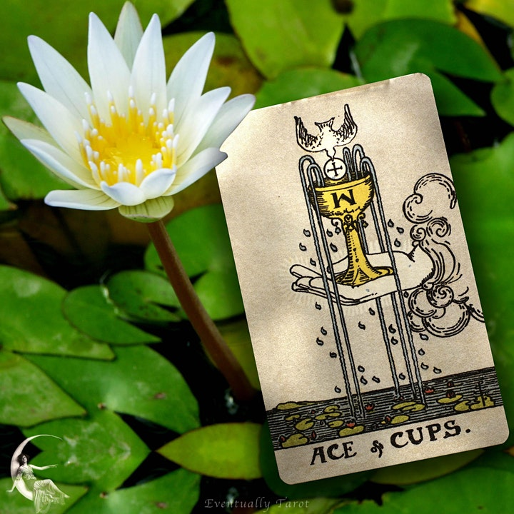 Tarot for Self-Determination image