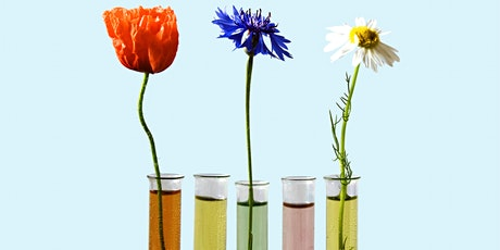 Test Tube Science - Woodcroft Library tickets