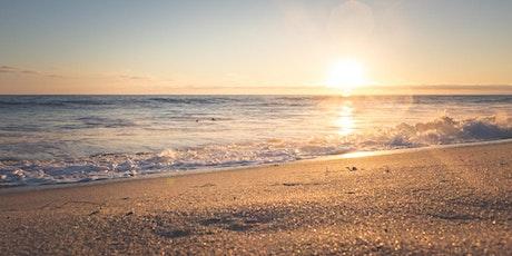 Mini Brains-on-the-Beach 2021 Virtual tickets