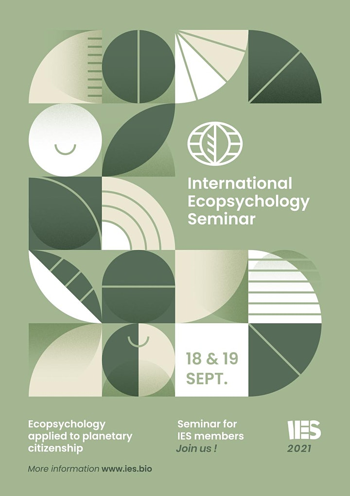 IES 2021 International Online Seminar image