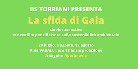 La sfida di Gaia-cineTorriani-film: IL RAGAZZO CHE CATTURO' IL VENTO biglietti