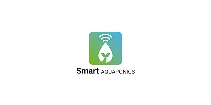Image pour Restitution du projet SMART AQUAPONICS