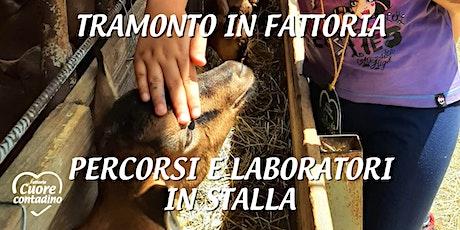 Tramonto in fattoria: percorsi e laboratori in stalla biglietti