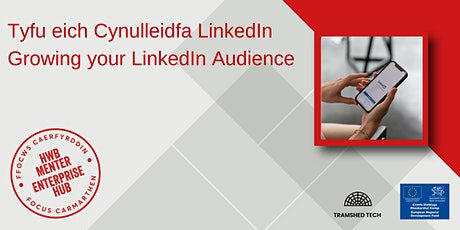 Tyfu eich Cynulleidfa LinkedIn | Growing your LinkedIn Audience biglietti