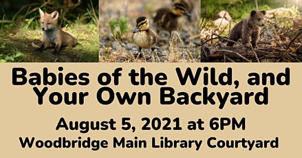 Babies of the Wild, and Your Own Backyard tickets