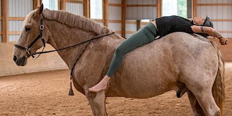 Horse Yoga & Meditation tickets