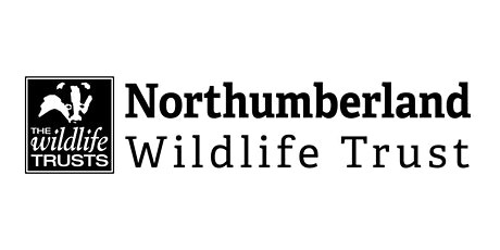 Wild World Heroes - Wild about Wildlife at Ashington Library tickets