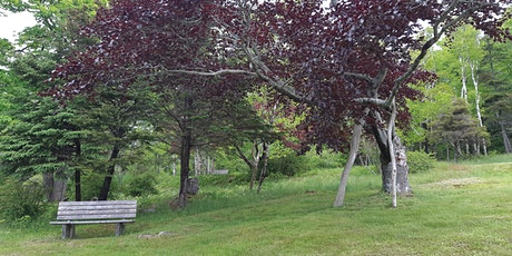 Discover McNabs Island: North End Heritage Tour - August 8, 2021, 10:00 AM tickets