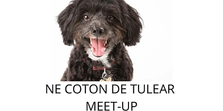 NE Coton De Tuler Meet Up tickets
