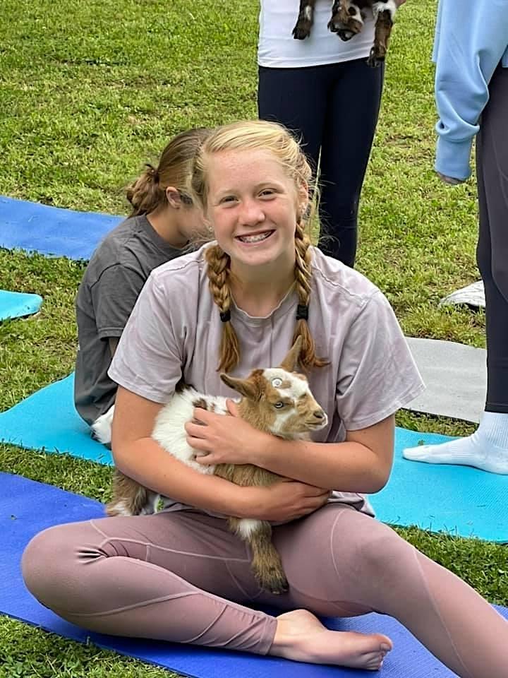 Goat Yoga image