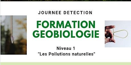 "Formation Géobiologie ""Les pollutions naturelles"" billets"