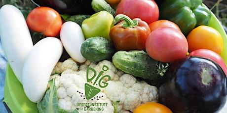 DIG ONLINE: Vegetable Gardening 101 tickets