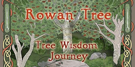 Rowan Tree - Tree Wisdom Journey - Online Workshop tickets