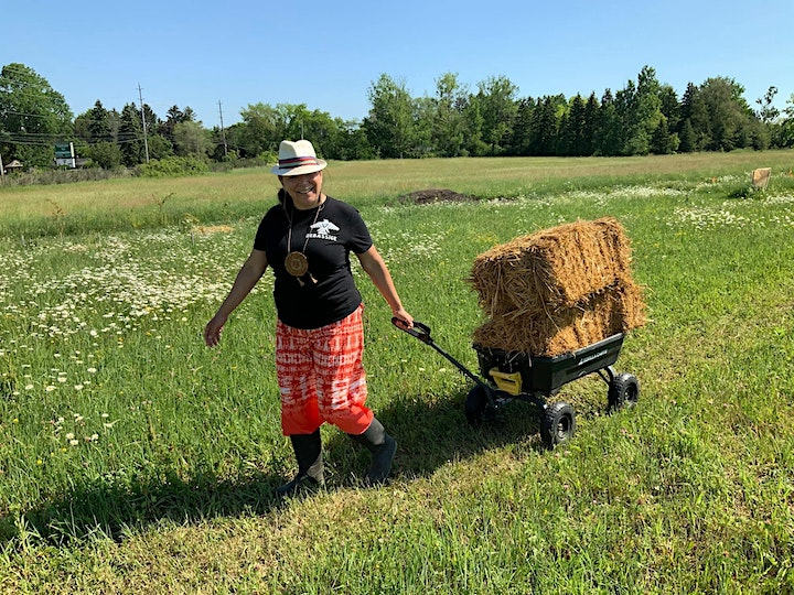 On the Land with KILN: Sovereignty Garden Summer Series image