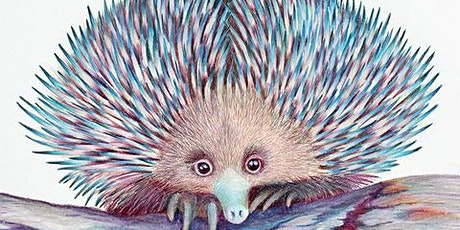 Learn to paint! Curious Echidna. tickets