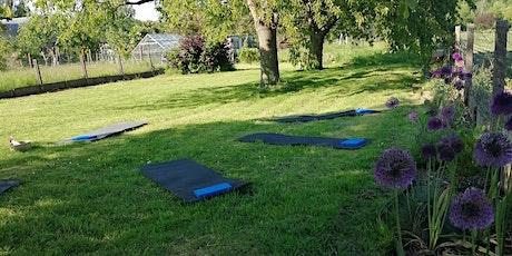 Stretch - yoga postural billets