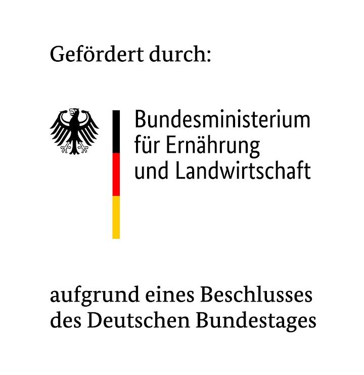 Digitalisierung in Forst und Holz kompakt: Bild