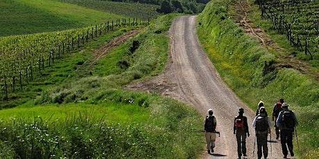 NaturArte Trekking | sul percorso 408 con Luciano Tarantino biglietti