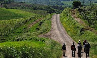 NaturArte Trekking | dal Cenobio all'Eremo biglietti