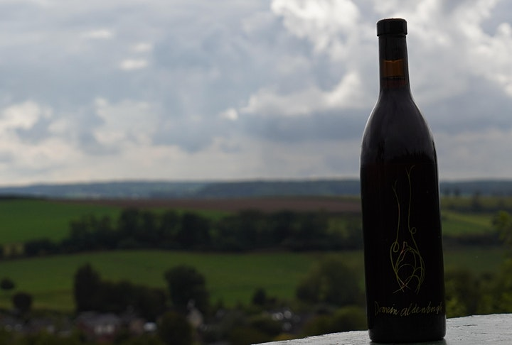 Wijngaard excursie / wijntour met proeverij image