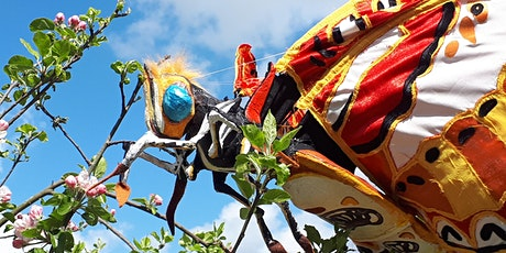 Insect Safari at Winterbourne House and Gardens tickets