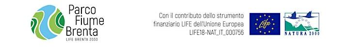 Immagine Finanziamenti PSR Veneto