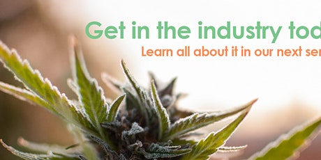 Cannabis Business & Jobs - Central Valley tickets