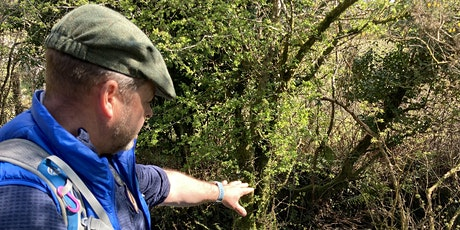 Introduction to Foraging - Lúnasa Festival 2021 tickets