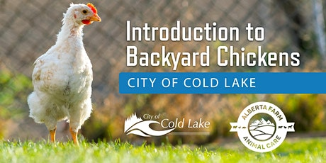 Introduction to Backyard Chickens - City of Cold Lake tickets