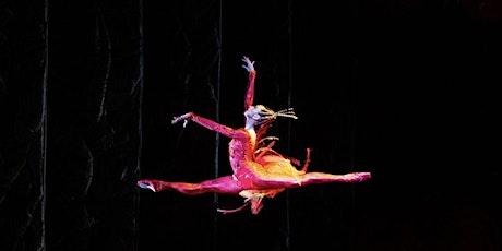 Master Class Series with Nathalia Arja, Principal with Miami City Ballet entradas