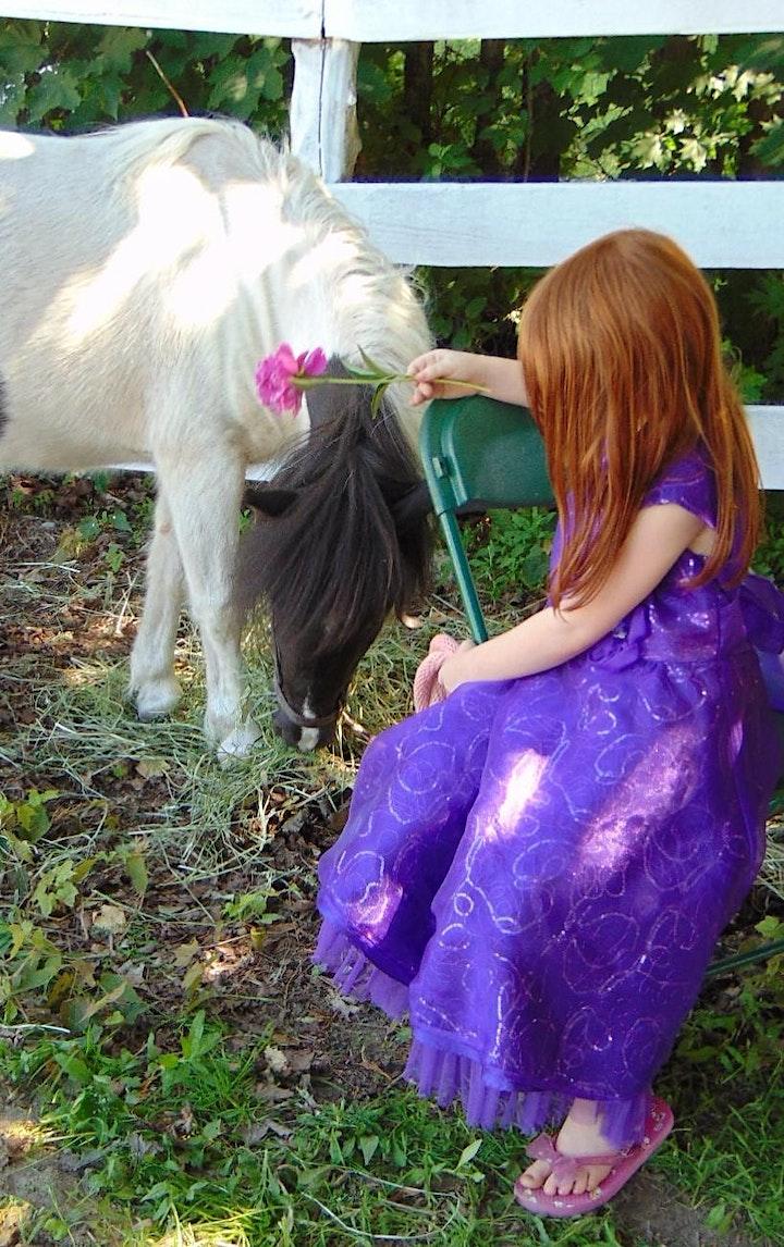 Pony Picnic image