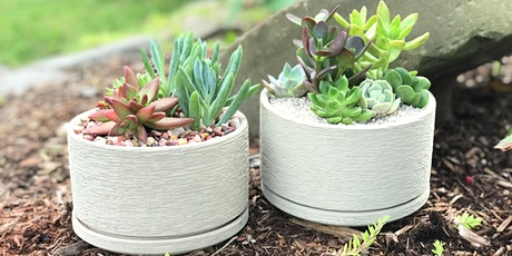 New Workshop!  the flower shed's Succulent Planting Workshop @ R Dee Winery tickets