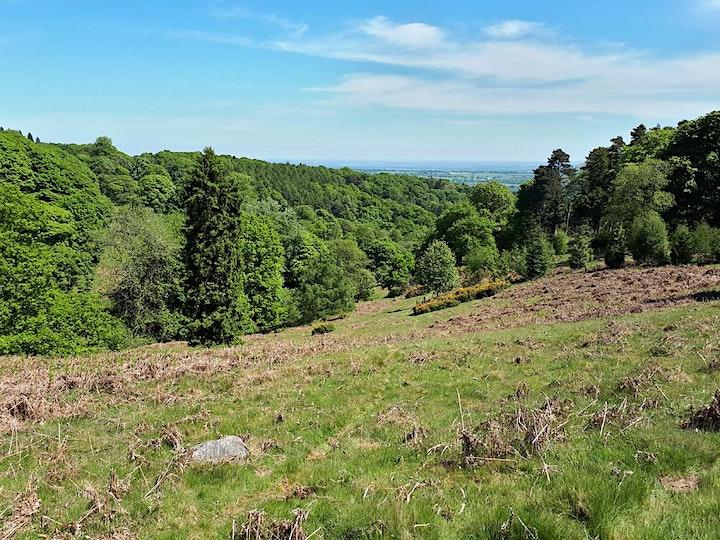 Brown Clee Hike – Shropshire Hills image