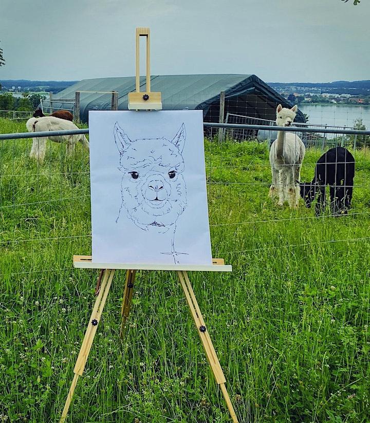 Malen inmitten Alpakas- Zürich image