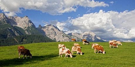 Teil 3 und 4 : Ausbildung zum Coach (RELF®)im Appenzeller Ländle/Schweiz Tickets