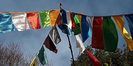 Dhargyey Buddhist Centre: Introduction to Buddhism Course #2  30/8/21 tickets