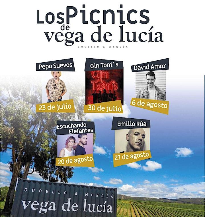 Imagen de LOS PICNIS VEGA DE LUCIA