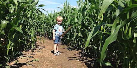Stanhill Farm Maize Maze tickets