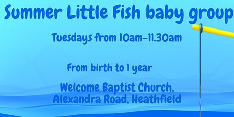 Summer Little Fish baby group tickets