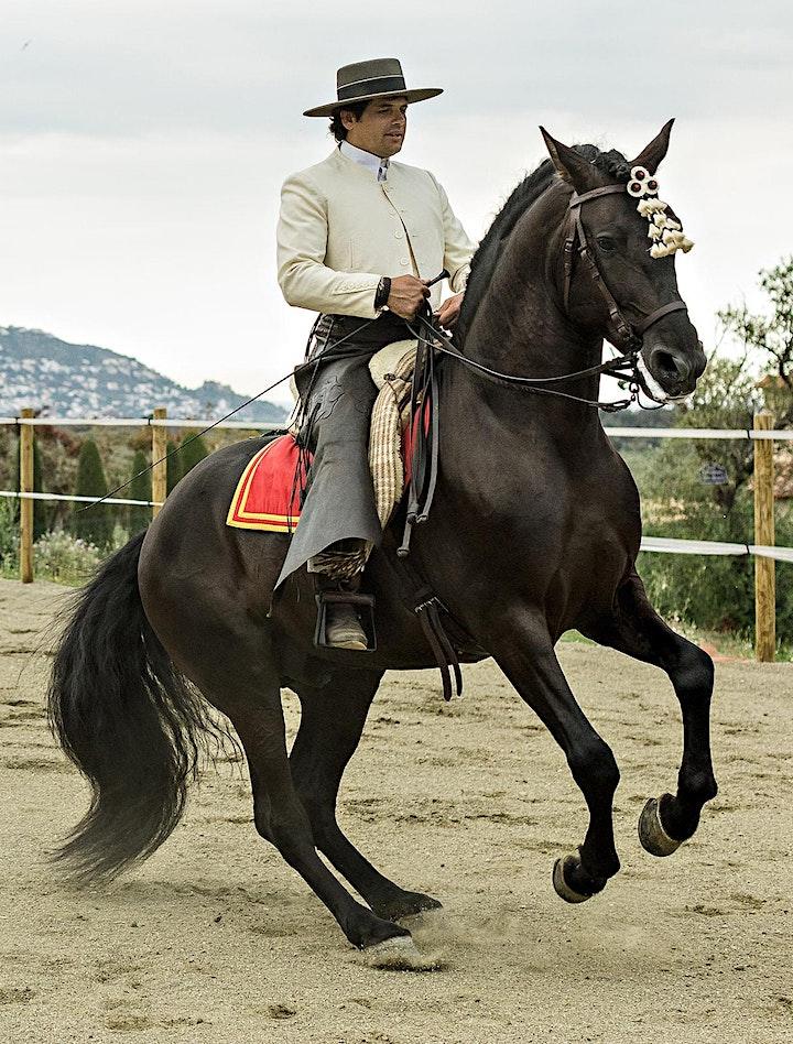 Imagen de Exhibición  de caballos y jinetes con degustación