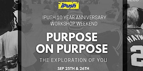 The iPush 10 Year Anniversary Workshop Weekend tickets