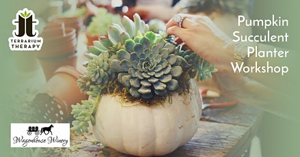 In-Person Pumpkin Succulent Workshop at Wagonhouse Winery tickets