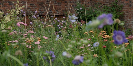 PYRUS Hortus: for the Love of Flowers tickets