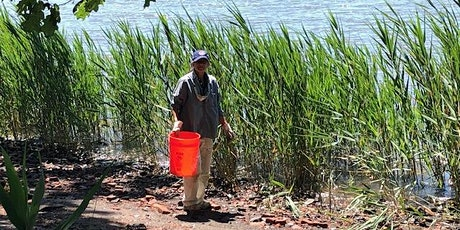 Clean up and Invasive Plant Management at Edith Read tickets