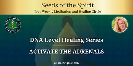 Seeds of the Spirit DNA Healing: Activate the Adrenals tickets